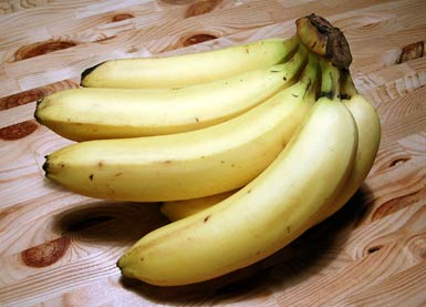 winterharte banane winterharte banane online kaufen bestellen winterharte banane rot 1a qualit. Black Bedroom Furniture Sets. Home Design Ideas